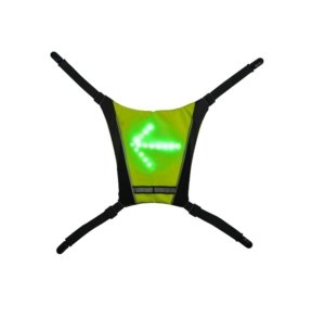 citycoco.hr-dodatak za ruksak s led ekranom (3)